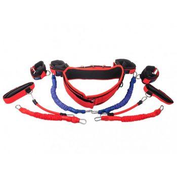 Купить тренажер Fight Belt