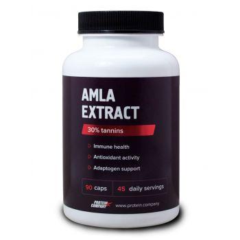Amla extract / Экстракт амлы / Капсулы / 45 порций / 90 капсул