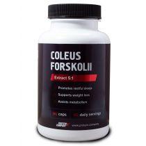 Coleus forskohlii / Экстракт Колеус форсколии / Капсулы / 90 порций / 90 капсул